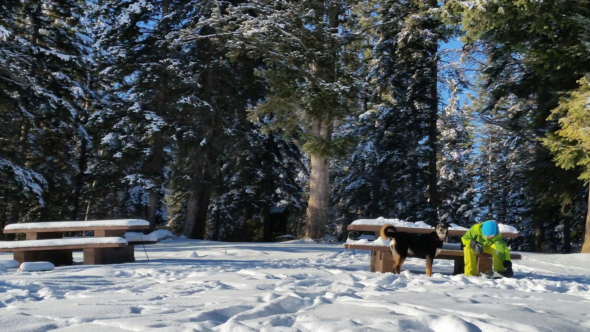 Snowshoeing Cedar Lake Golden BC