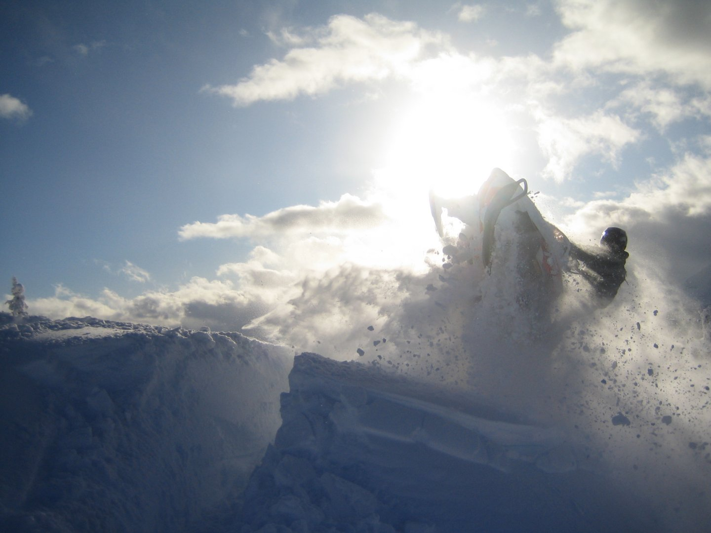 reviews alaska wild guides snowmobile tours