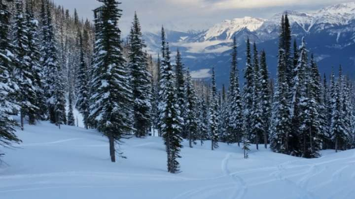 Skiing at Kicking Horse Mountain Resort Golden BC Canadian Rockies