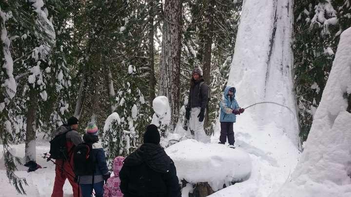 Canada Wild Tours