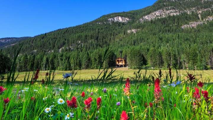 Mount 7 Lodges